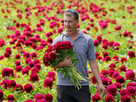 Demand for peonies surged by almost 100% in last three years, says supermarket