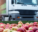 'An escalating crisis!' Fresh produce left to rot and prices to rise amid lorry driver shortage