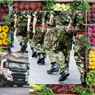 Calls for military to be put on standby to deliver groceries