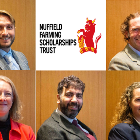 Five members of horticulture and produce sector awarded 2020 Nuffield Farming Scholarships