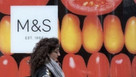 M&S commits to sustainable agriculture through 5-year programme