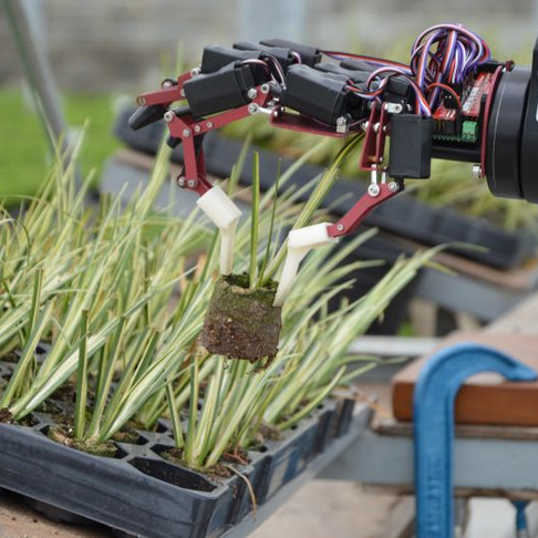 Brexit uncertainty delaying farmers' use of agritech