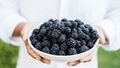 Brits love their blackberries! Popularity booms in the UK