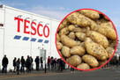 Tesco will sell unwashed potatoes to increase shelf life