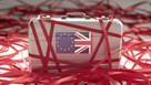 Bold proposals to slash Brexit red tape unveiled