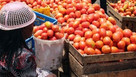 Kenyan farmers count cost of COVID
