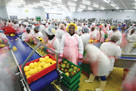 Blue Skies' fresh fruit products make millions while creating a lasting impact