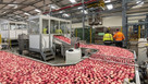 Cutting emissions in fruit production