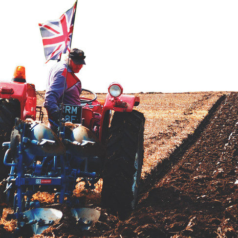 Opinion: UK agriculture is on the line this week