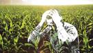 New film raises mental health awareness within farming