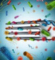 antibiotic-resistance-food_456px.jpg
