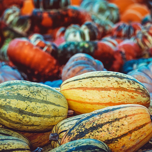 Opinion: Pumpkin picking, more than just a Halloween trend
