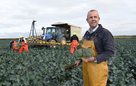 Why won't Brits pick vegetables for £30 an hour?