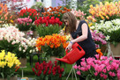 Chelsea Flower Show pushed back to autumn for first time