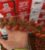 DRLNrFyW0AExUsy_edited.jpg