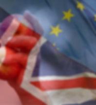 BrexitFPC.jpg