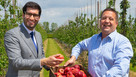 UK apple suppliers welcome enhanced trade partnership with India