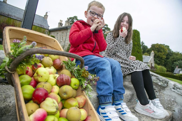 Covid-safe apple harvest drive-through for families at historic Aberdeenshire attraction