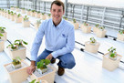 Cucumber research could help farmers extend seasons and diversify