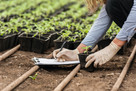 Study analyses top environmental job roles in UK's horticulture