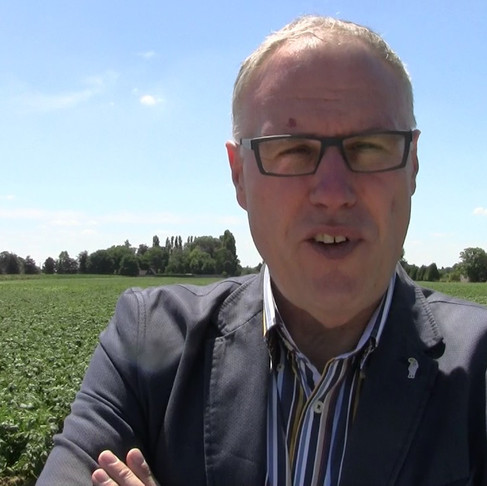 Opinion: 2020 could become the toughest NW European potato season in 50 years