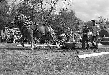 HorsePullA.jpg