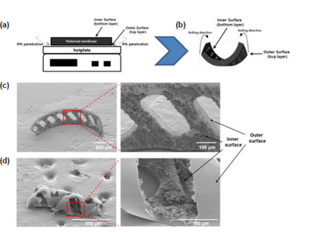 Simple fabrication of helical-shaped microrobot with NdFeB nanoparticle by self-rolling technique