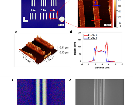 Projection Photolithography for Microscale Patterning and 2D Field-effectTransistor Demonstration