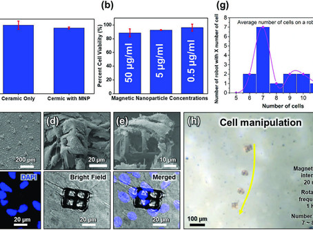 Magnetically Actuated SiCN‐Based Ceramic Microrobot for Guided Cell Delivery