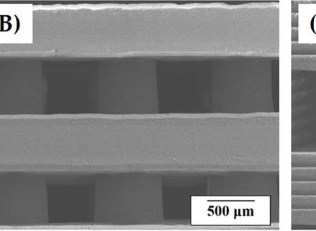 Photocurable ceramic slurry using solid camphor as novel diluent for conventional digital light proc