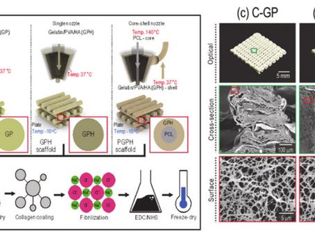 Fabrication of Mechanically Reinforced Gelatin/Hydroxyapatite Bio-Composite Scaffolds by Core/Shell