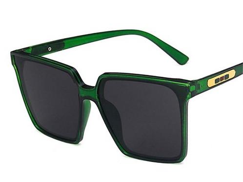 Envy Sunglasses