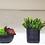 Thumbnail: Conjunto de 4 vasos artesanais com arranjos permanentes