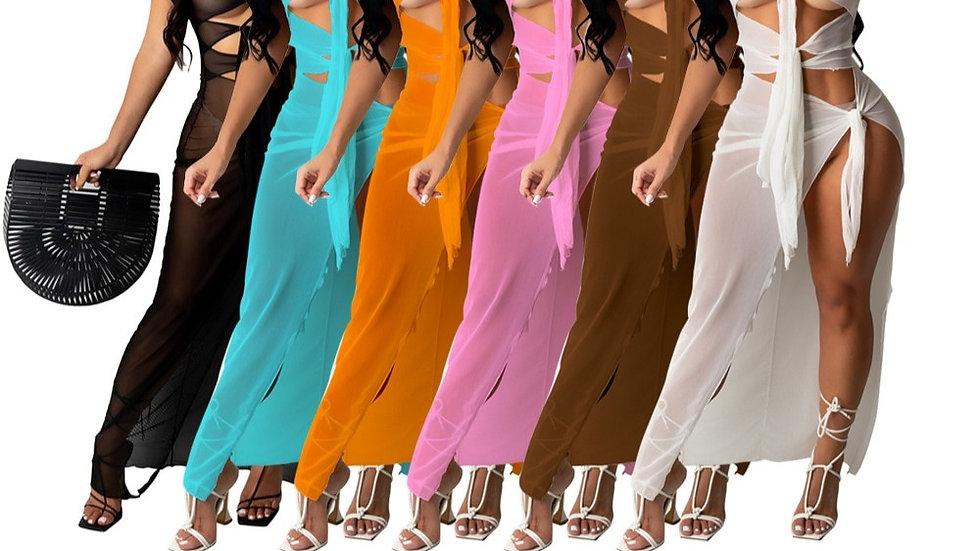 Sheer See-Through Long Mesh Dress