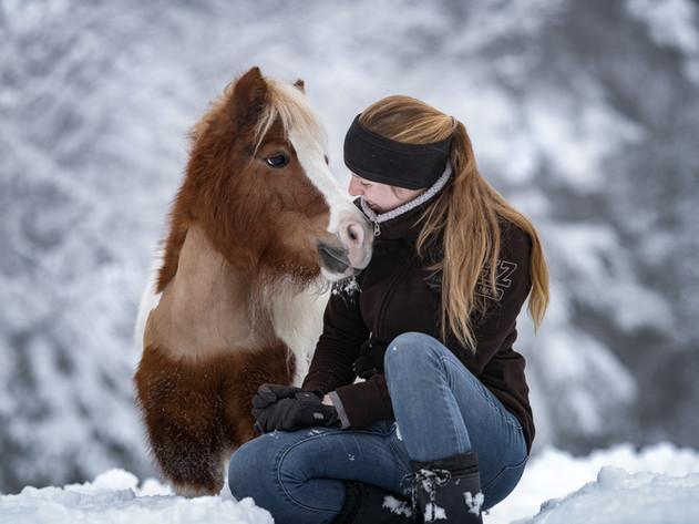 Pferdefotografie.jpg