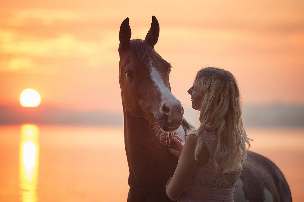 Pferdefotografie Susanne Wolf