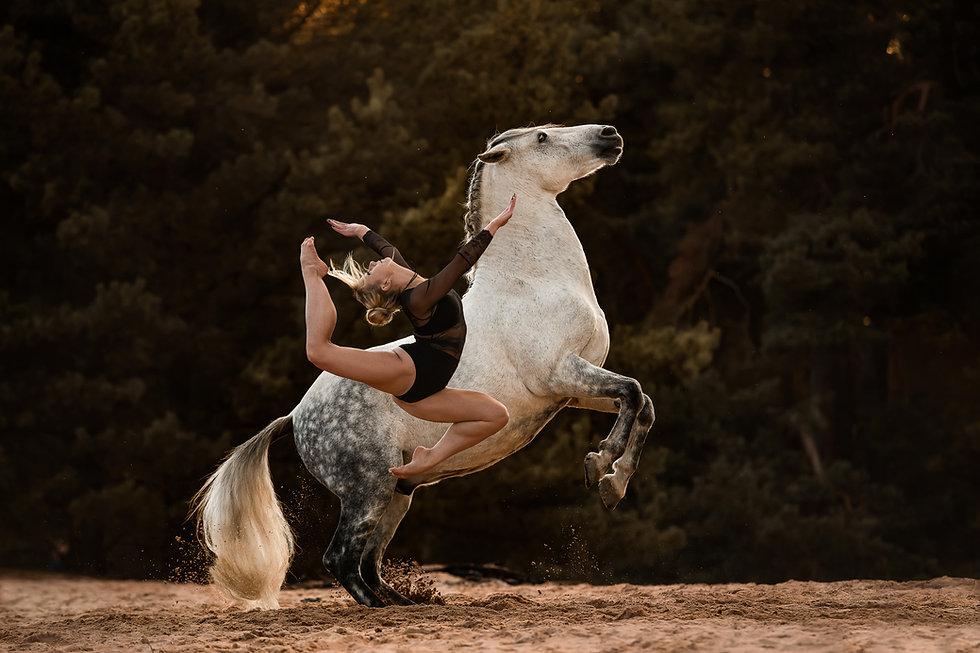susanne-wolf-photos.jpg