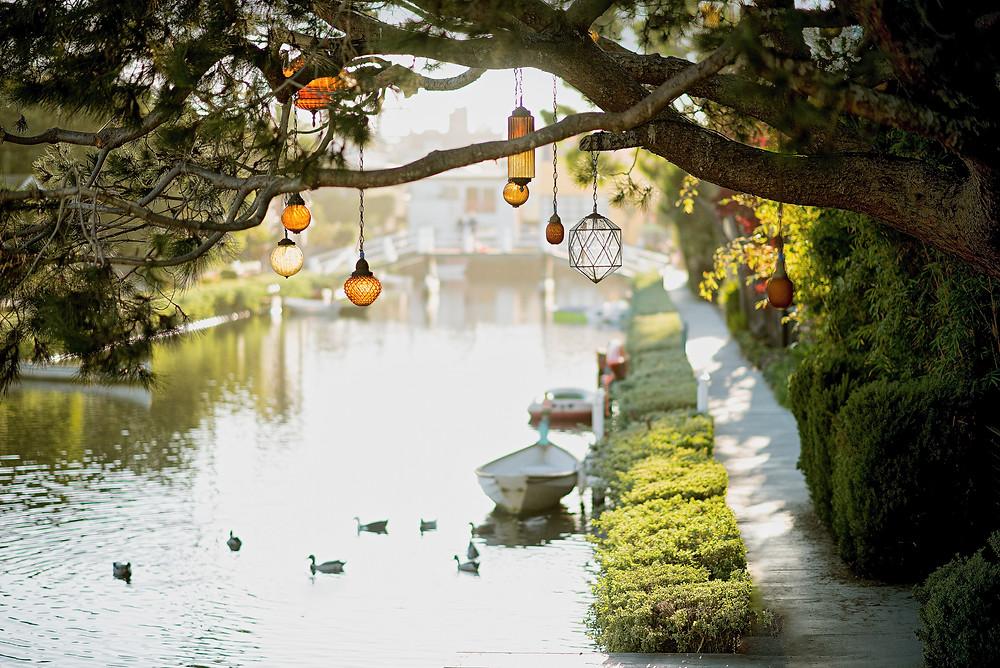 Iluminacion para tu jardin MIC Multiservicios