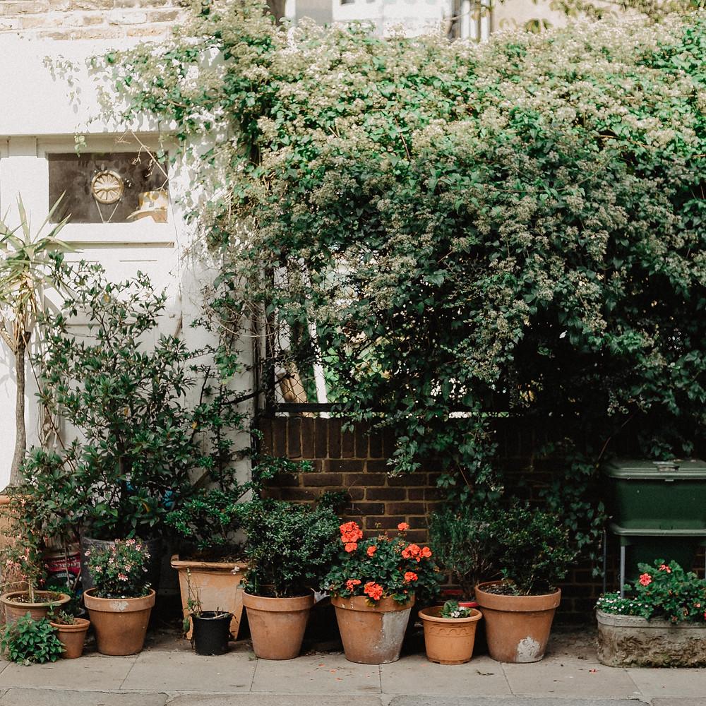 Jardin para residencia de lujo MIC Multiservicios