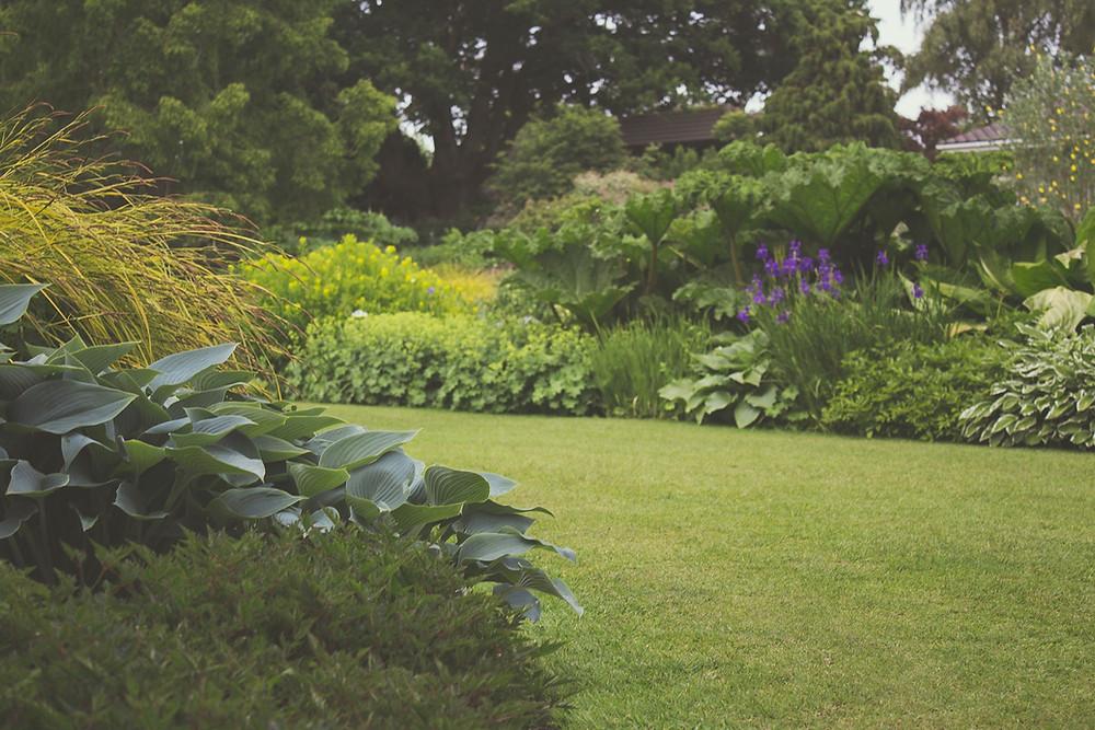 Remodelacion de jardin MIC Multiservicios