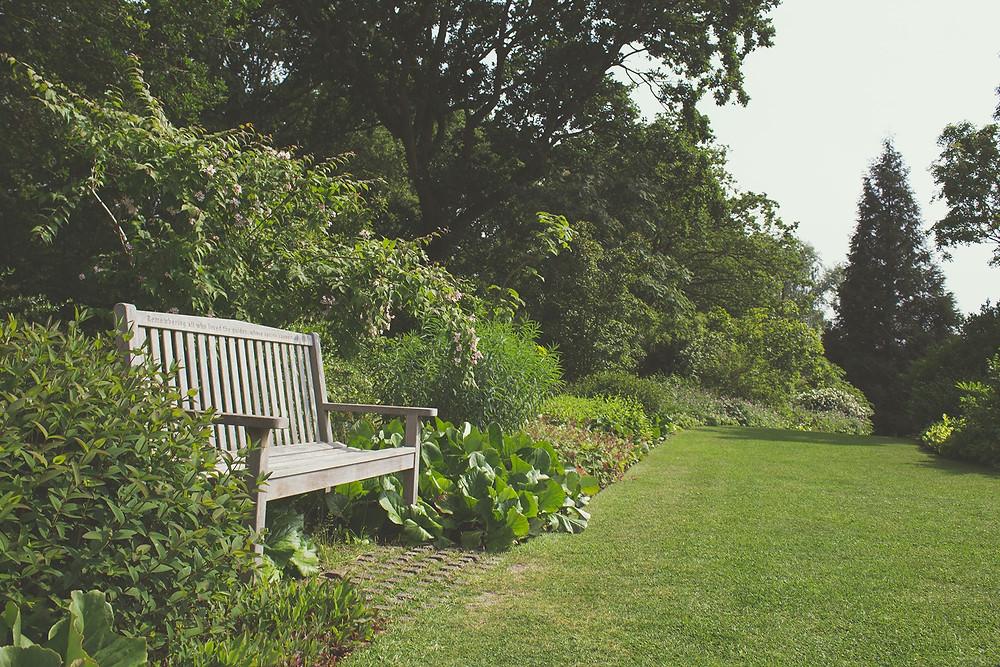Diseña tu jardin MIC Multiservicios
