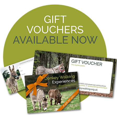 Gift Vochers Now Available