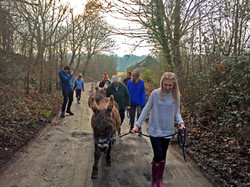 A walking group heading for the wood