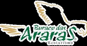 logo_buraco_margem.png