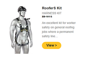 Roofers s kit.PNG