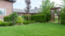 ландшафтный дизайн ракурс 3.jpg