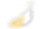 WEB_FINAL_ART_logo_NT_002_yellow.png