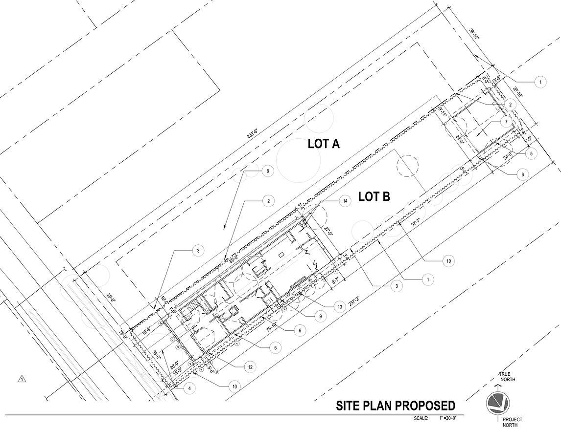 2019.113_site plan.jpg