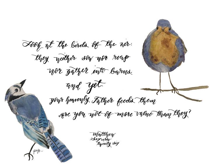 birdsoftheair-01.png