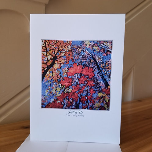 "7"" x 5"" Blank Greeting Card of 'Looking Up'"